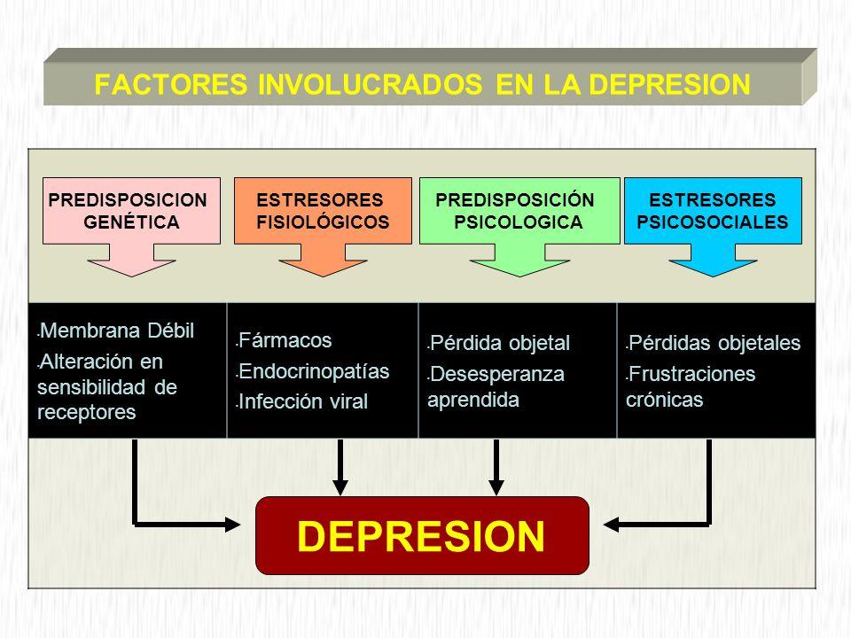 FACTORES INVOLUCRADOS EN LA DEPRESION