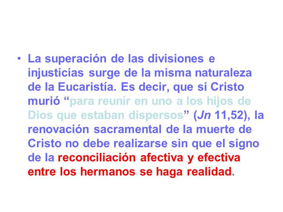 La superación de las divisiones e injusticias surge de la misma naturaleza de la Eucaristía.