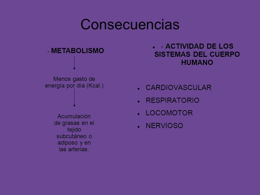 Consecuencias - ACTIVIDAD DE LOS SISTEMAS DEL CUERPO HUMANO