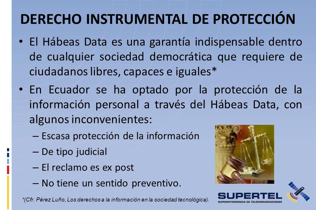 DERECHO INSTRUMENTAL DE PROTECCIÓN