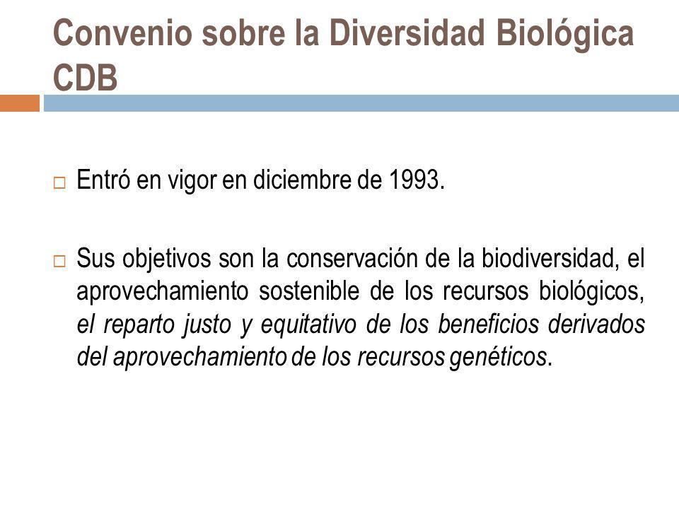 Convenio sobre la Diversidad Biológica CDB