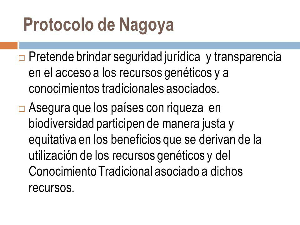 Protocolo de Nagoya
