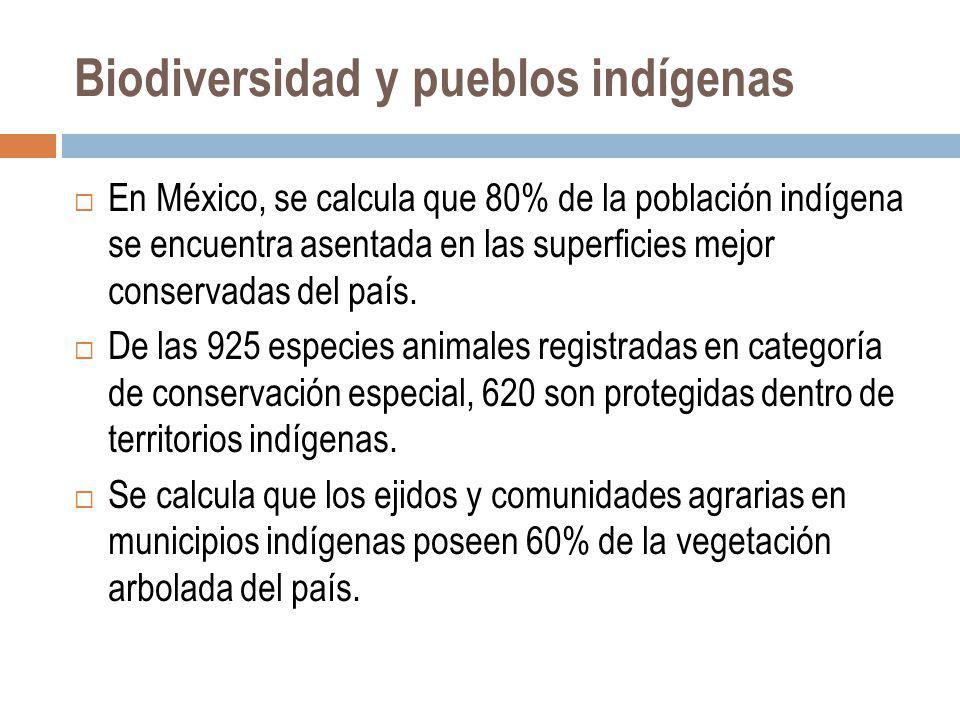 Biodiversidad y pueblos indígenas