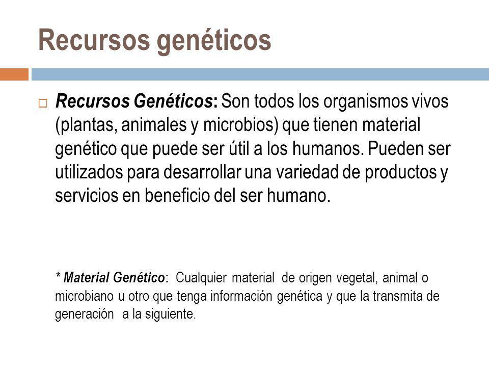 Recursos genéticos
