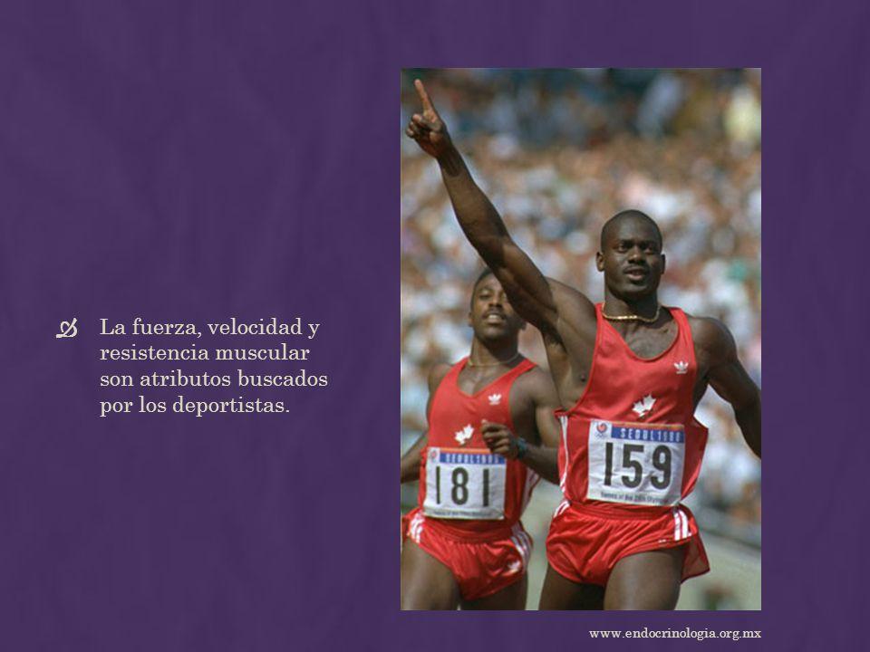 La fuerza, velocidad y resistencia muscular son atributos buscados por los deportistas.