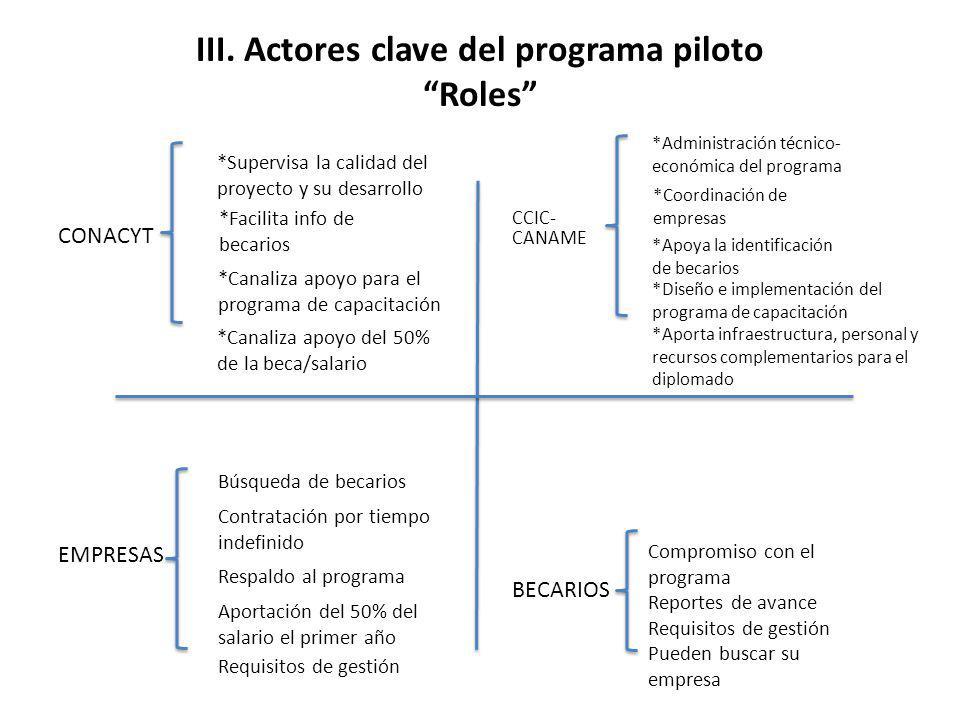 III. Actores clave del programa piloto Roles