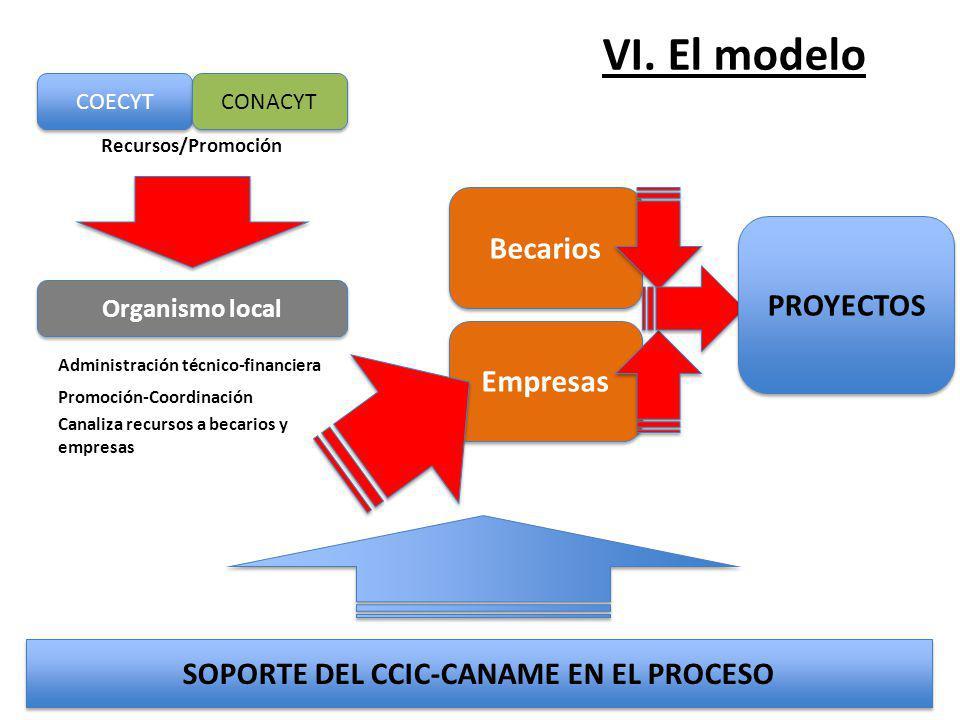 SOPORTE DEL CCIC-CANAME EN EL PROCESO