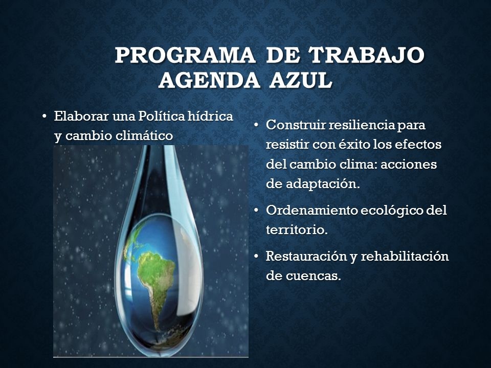 Programa de Trabajo Agenda Azul