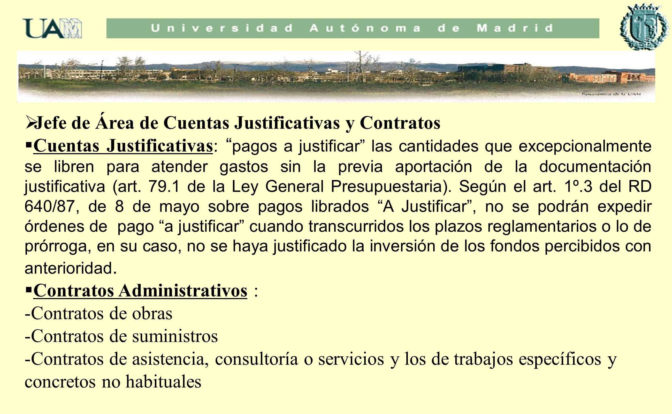 Jefe de Área de Cuentas Justificativas y Contratos