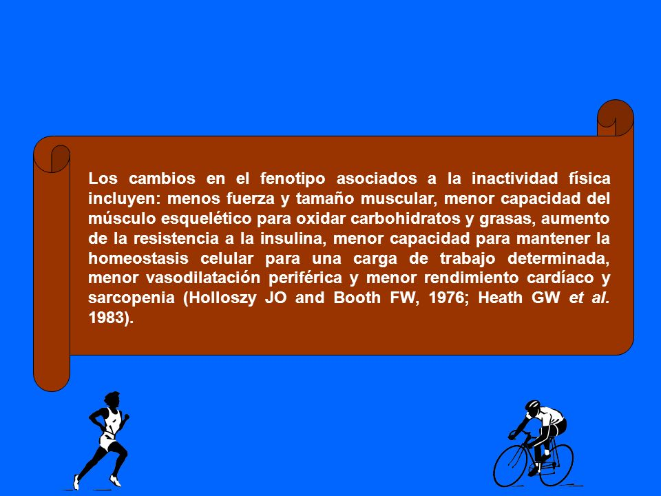 Los cambios en el fenotipo asociados a la inactividad física incluyen: menos fuerza y tamaño muscular, menor capacidad del músculo esquelético para oxidar carbohidratos y grasas, aumento de la resistencia a la insulina, menor capacidad para mantener la homeostasis celular para una carga de trabajo determinada, menor vasodilatación periférica y menor rendimiento cardíaco y sarcopenia (Holloszy JO and Booth FW, 1976; Heath GW et al.