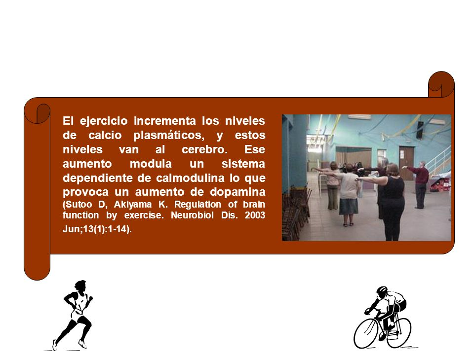 El ejercicio incrementa los niveles de calcio plasmáticos, y estos niveles van al cerebro.