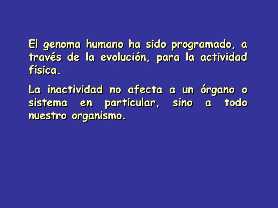 El genoma humano ha sido programado, a través de la evolución, para la actividad física.