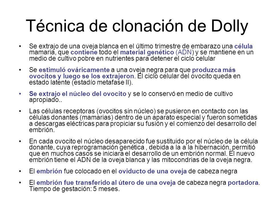 Técnica de clonación de Dolly