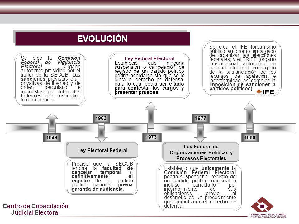 Ley Federal de Organizaciones Políticas y Procesos Electorales