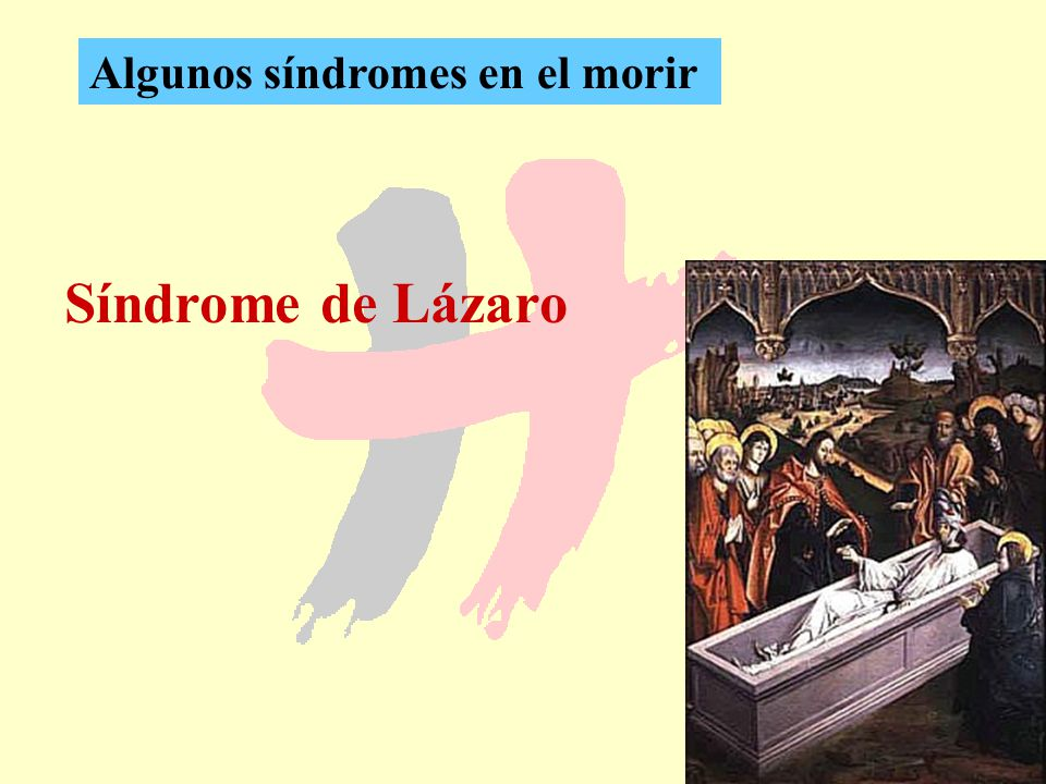 Algunos síndromes en el morir