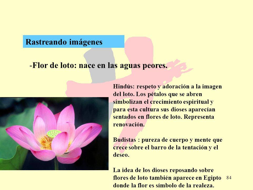 Flor de loto: nace en las aguas peores.