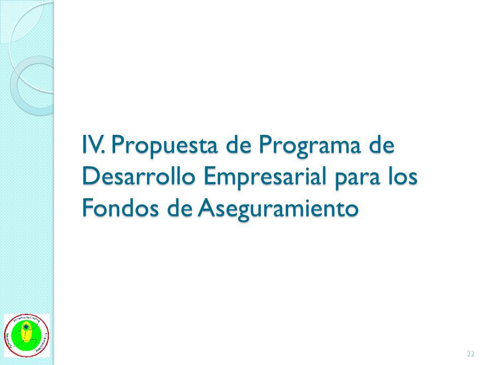 IV. Propuesta de Programa de Desarrollo Empresarial para los Fondos de Aseguramiento