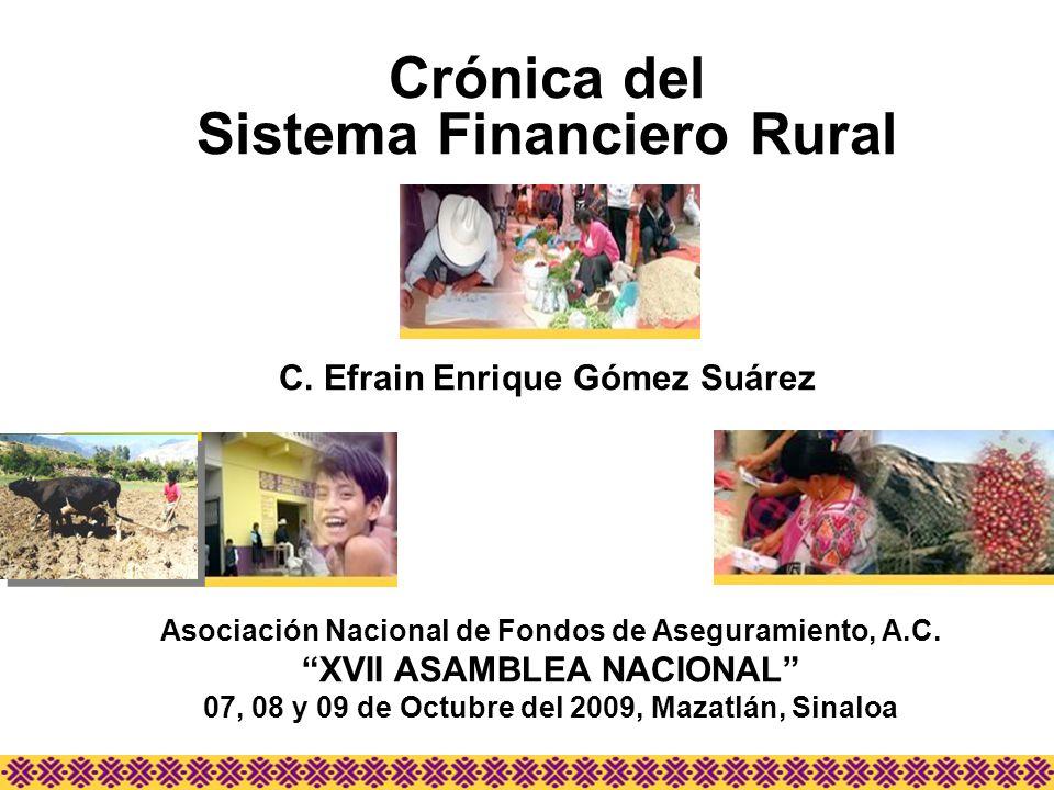 Crónica del Sistema Financiero Rural C. Efrain Enrique Gómez Suárez