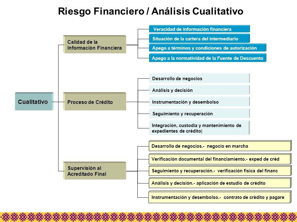 Riesgo Financiero / Análisis Cualitativo