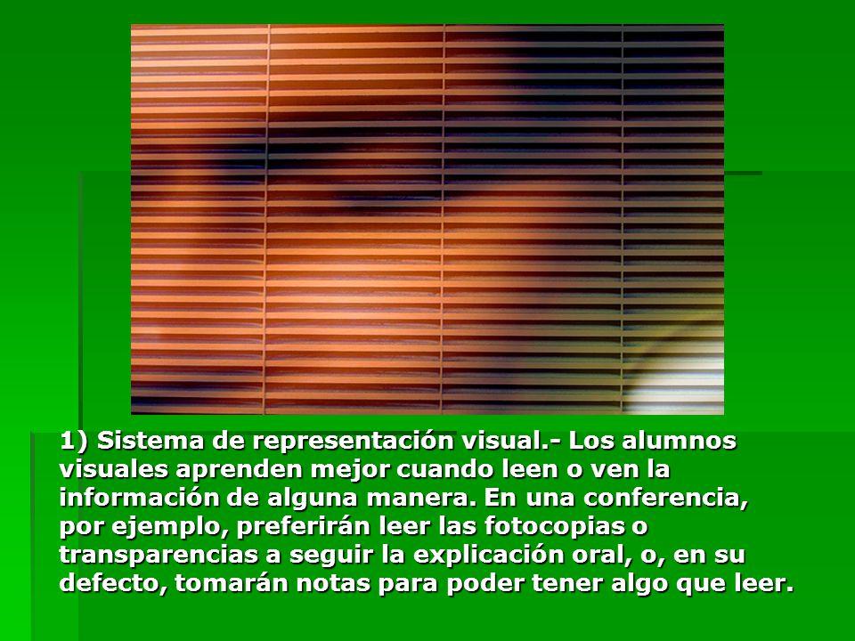 1) Sistema de representación visual