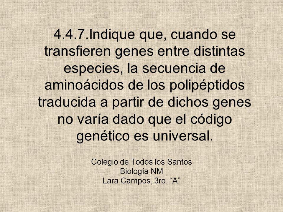 Colegio de Todos los Santos Biología NM Lara Campos, 3ro. A