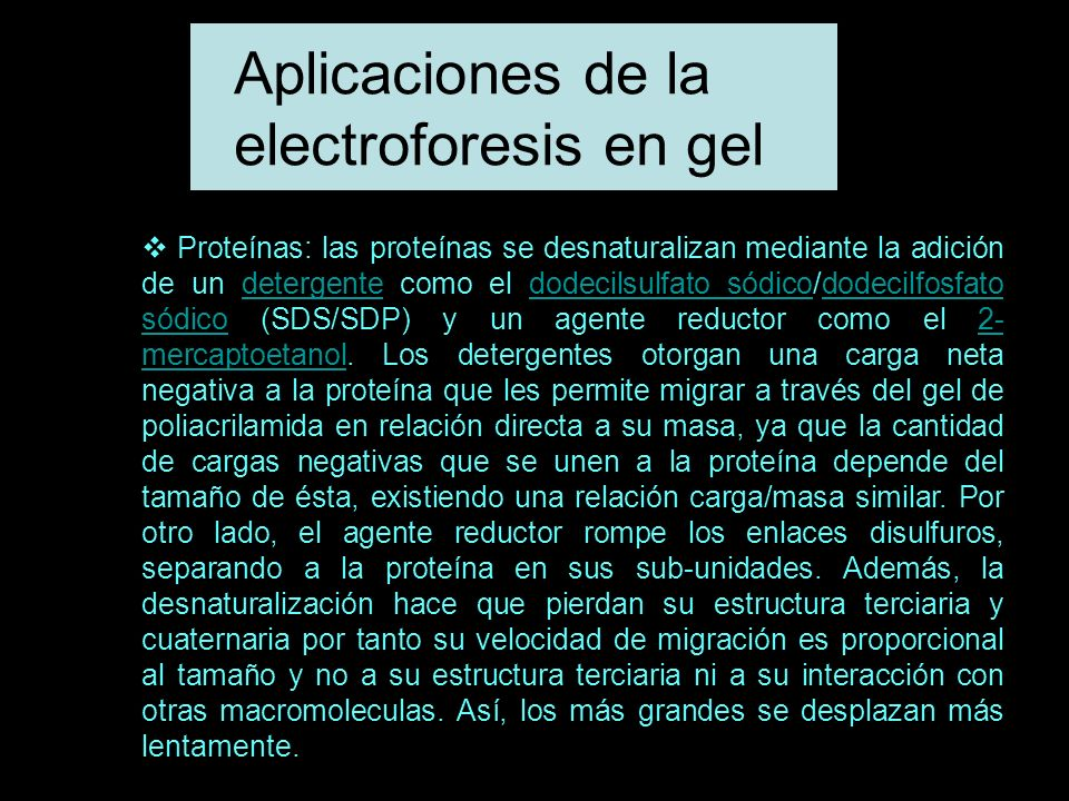 Aplicaciones de la electroforesis en gel
