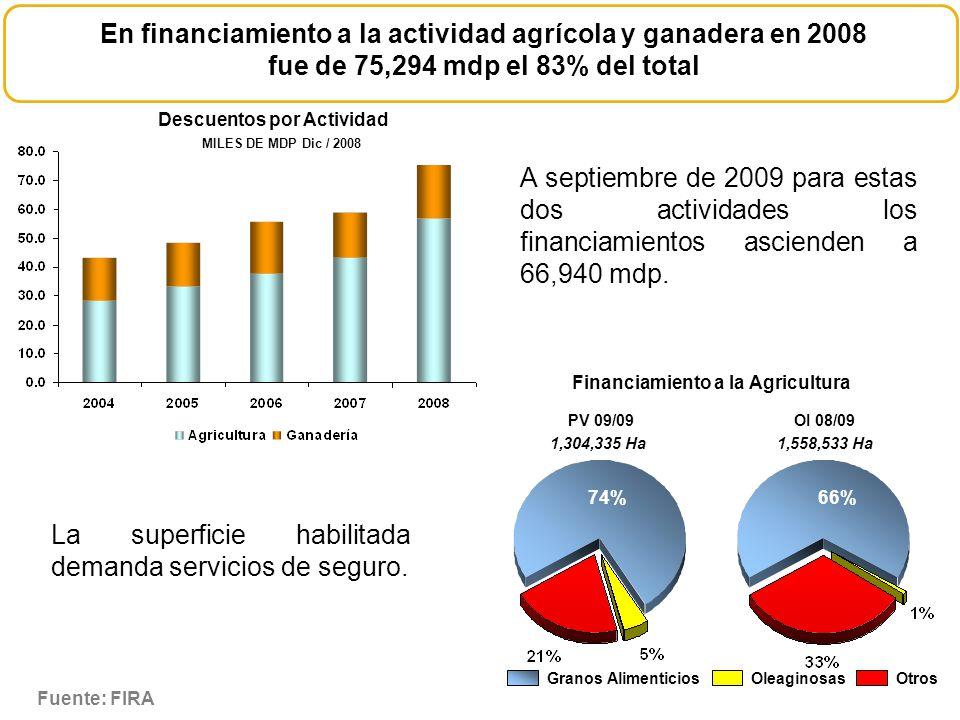 En financiamiento a la actividad agrícola y ganadera en 2008