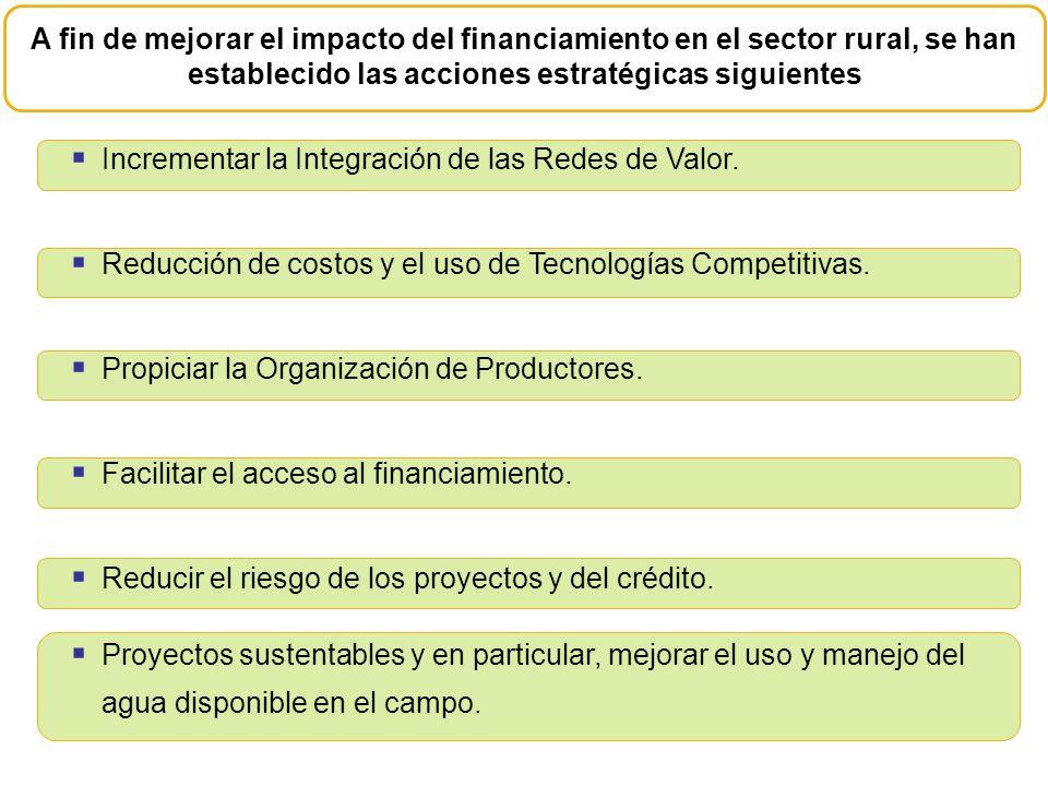 A fin de mejorar el impacto del financiamiento en el sector rural, se han establecido las acciones estratégicas siguientes