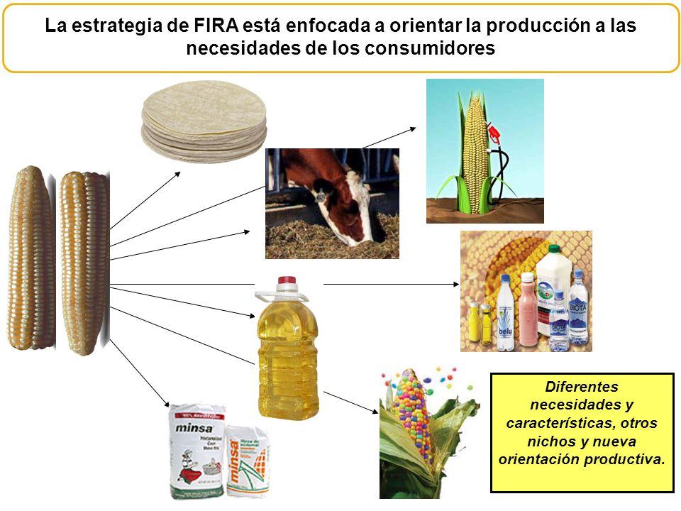 La estrategia de FIRA está enfocada a orientar la producción a las necesidades de los consumidores