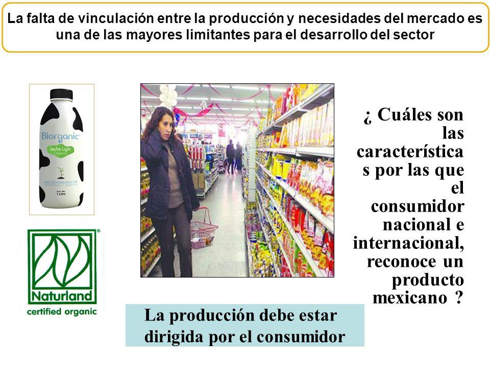 La falta de vinculación entre la producción y necesidades del mercado es una de las mayores limitantes para el desarrollo del sector