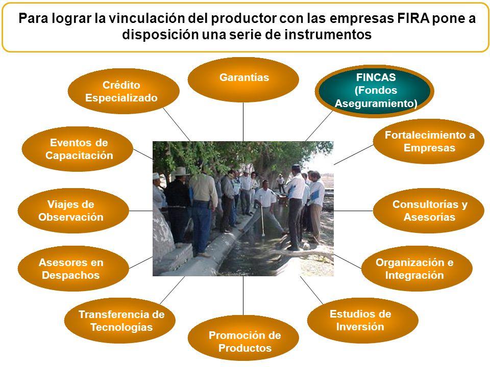 Para lograr la vinculación del productor con las empresas FIRA pone a disposición una serie de instrumentos