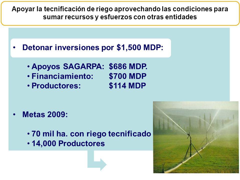 Detonar inversiones por $1,500 MDP: Apoyos SAGARPA: $686 MDP.