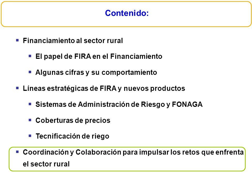 Contenido: Financiamiento al sector rural
