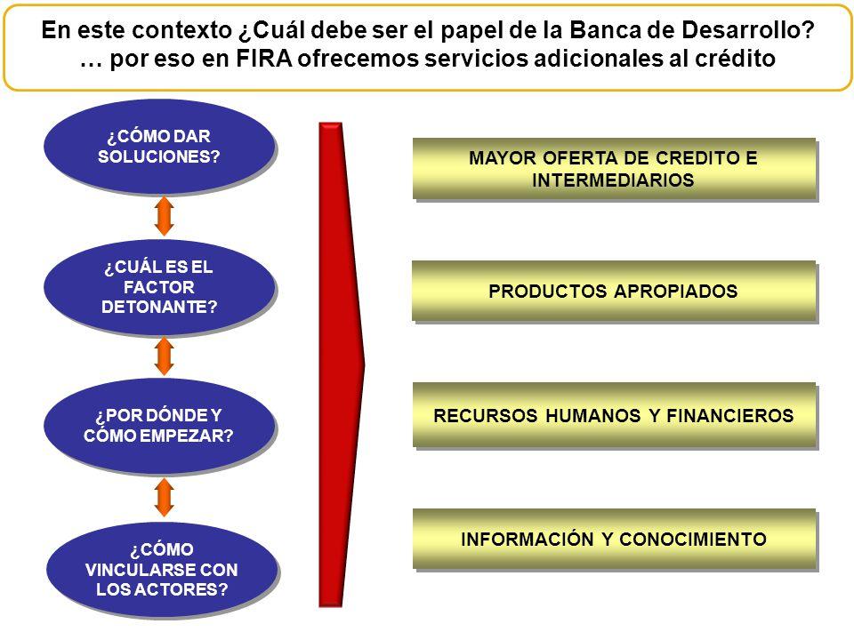 En este contexto ¿Cuál debe ser el papel de la Banca de Desarrollo