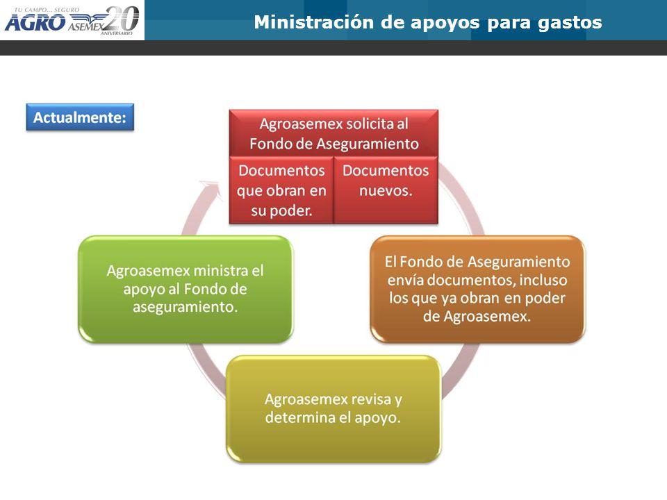 Ministración de apoyos para gastos