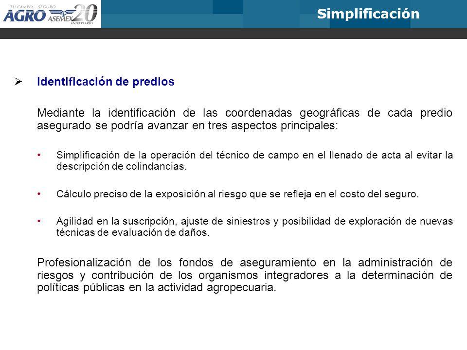 Simplificación Identificación de predios