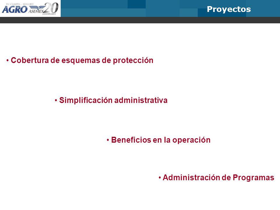 Proyectos Cobertura de esquemas de protección. Simplificación administrativa. Beneficios en la operación.