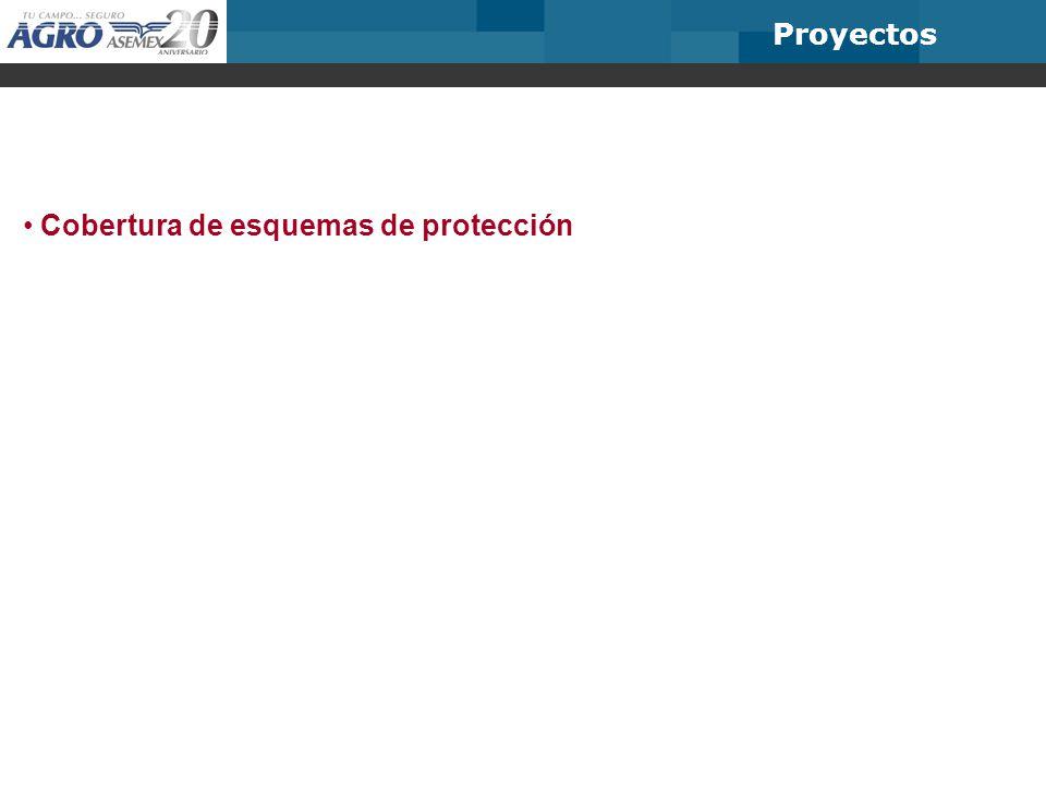 Cobertura de esquemas de protección