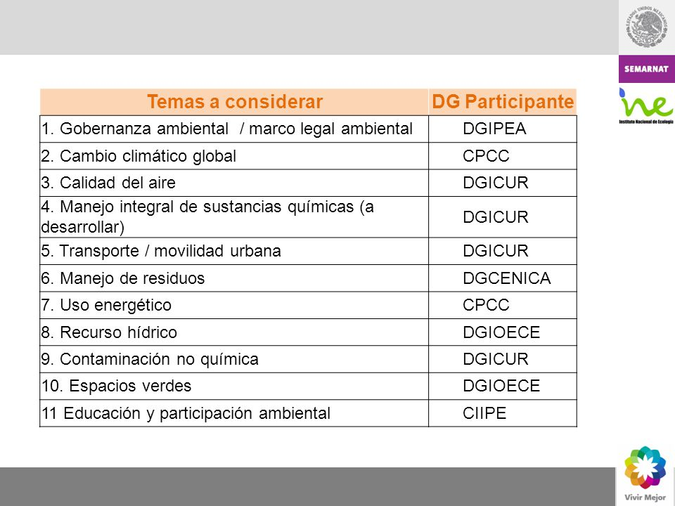 Temas a considerar DG Participante