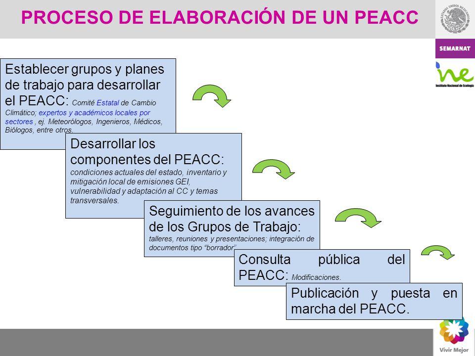PROCESO DE ELABORACIÓN DE UN PEACC