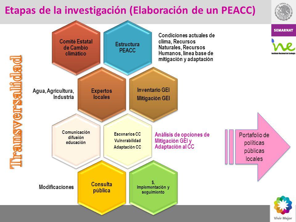 Transversalidad Etapas de la investigación (Elaboración de un PEACC)