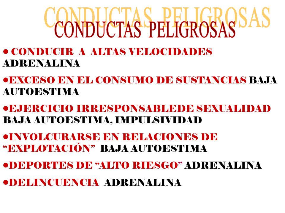 CONDUCTAS PELIGROSAS CONDUCIR A ALTAS VELOCIDADES ADRENALINA