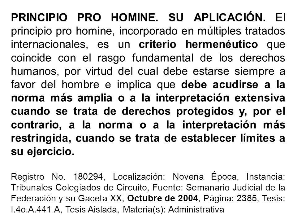 PRINCIPIO PRO HOMINE. SU APLICACIÓN