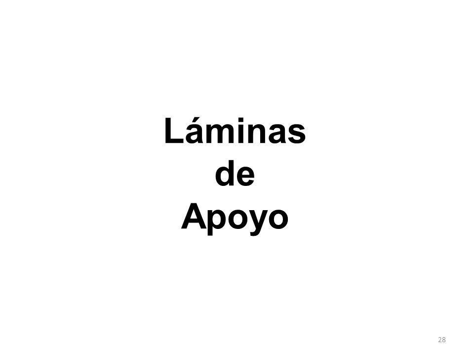 Láminas de Apoyo