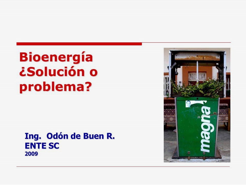 Bioenergía ¿Solución o problema