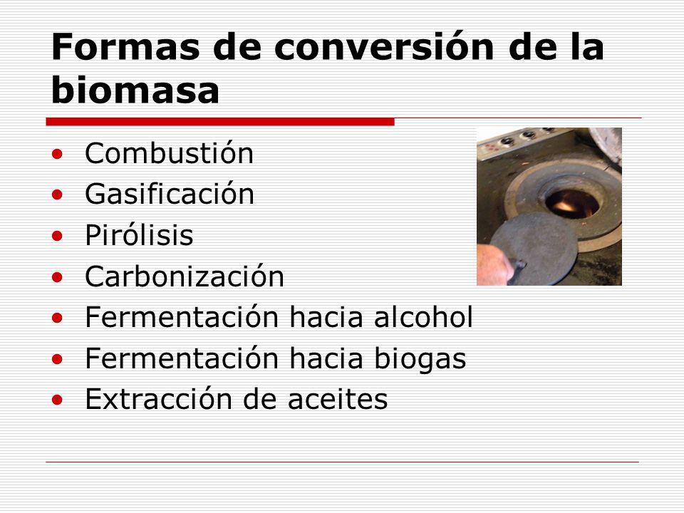 Formas de conversión de la biomasa