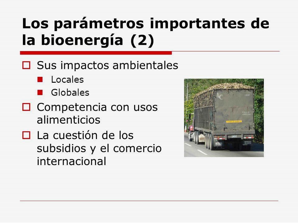 Los parámetros importantes de la bioenergía (2)