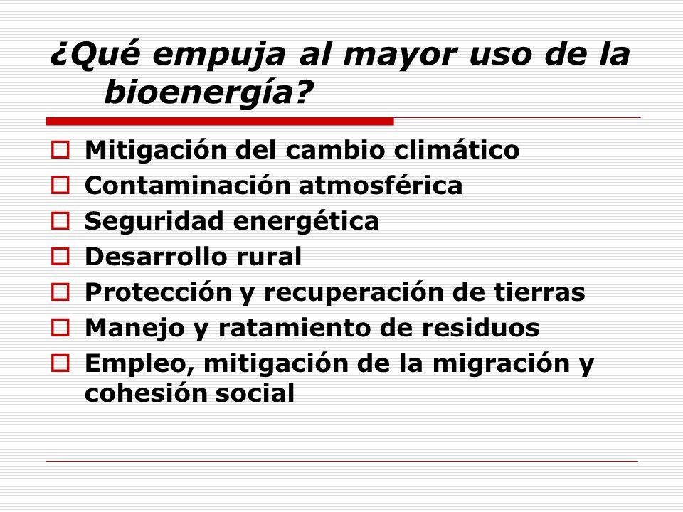 ¿Qué empuja al mayor uso de la bioenergía
