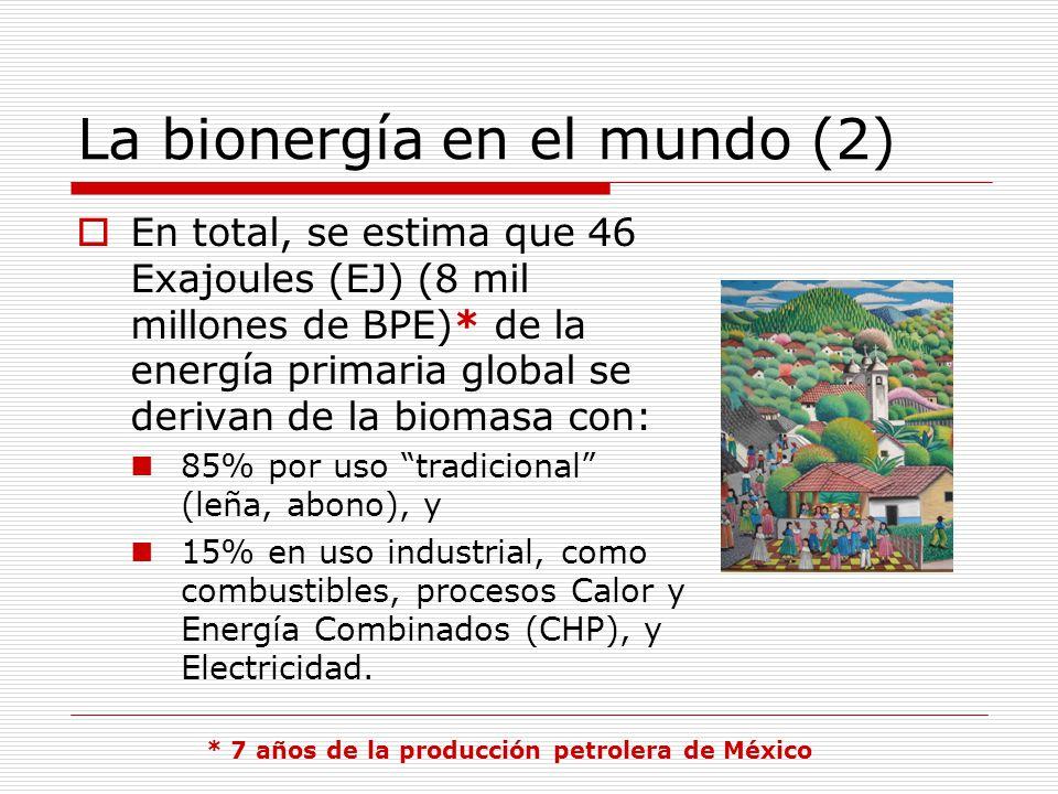La bionergía en el mundo (2)