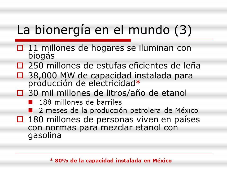 La bionergía en el mundo (3)